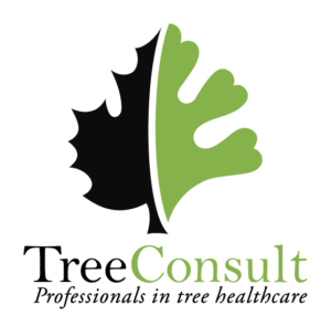 TreeConsultLogo_stacked with tagline